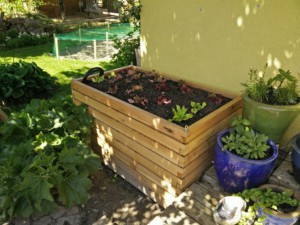 Hochbeet 140 x 80 x 80 von Gartenfrosch