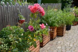 Gartenfrosch Pflanzkasten verschiedene Ausführungen