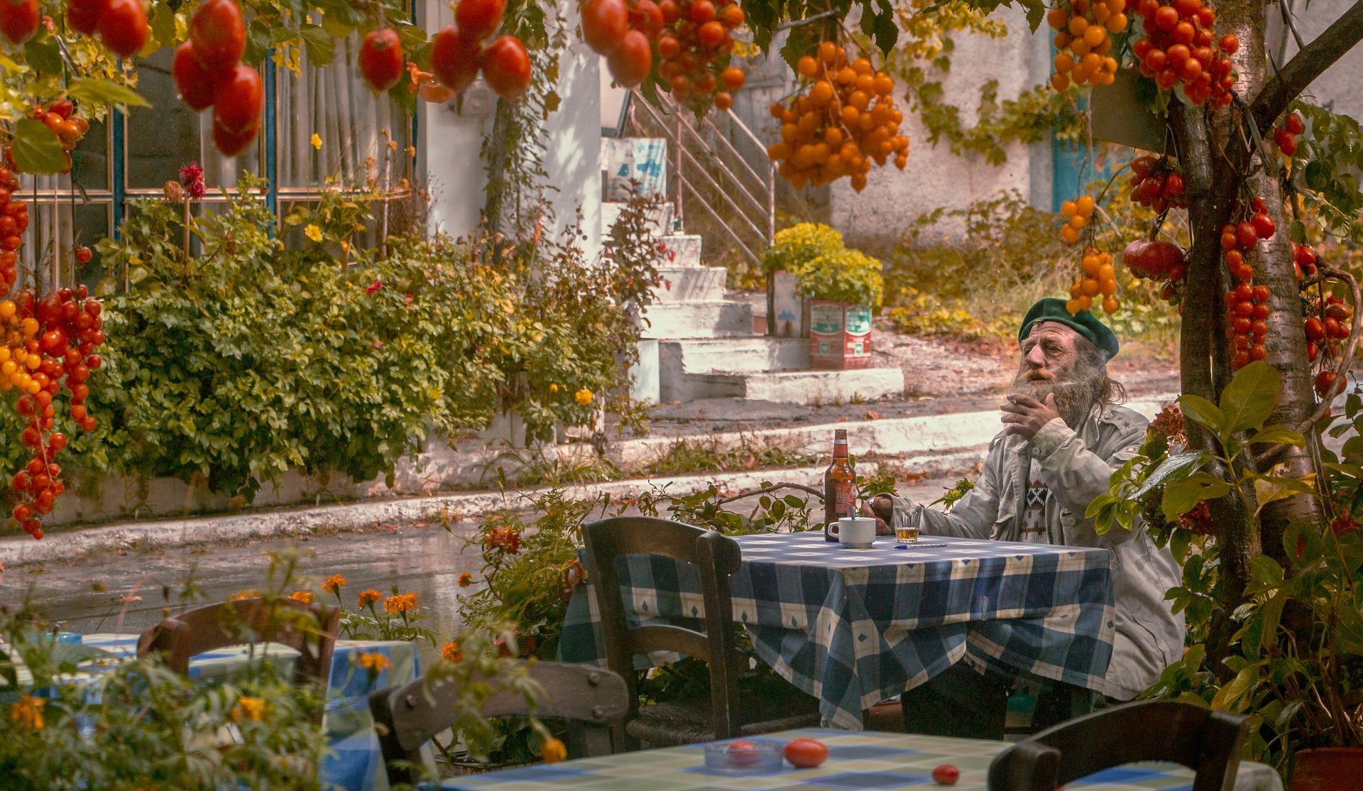 Gemüsegarten mit Gärtner und reifen Tomaten