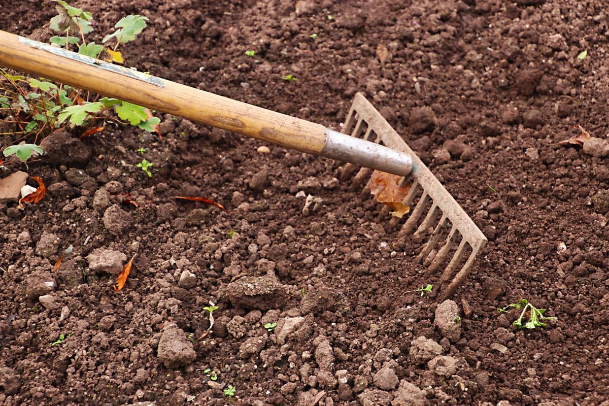 Der Boden wird nach dem Winter vorbereitet für die Aussaat