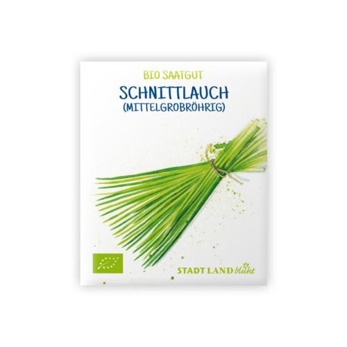 Bio Saatgut Schnittlauch mittelgrobröhrig.