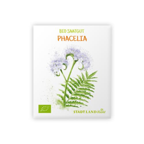 Phacelia Samen
